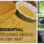 5 Essential Farmsteading skills you can learn now!